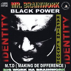Mr. Brainwork Foto artis
