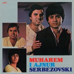Muharem Serbezovski, Ajnur Foto artis