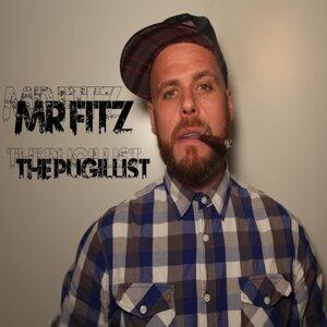 Mr Fitz Foto artis