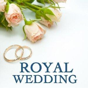 Royal Wedding Orchestra 歌手頭像