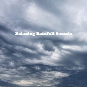Relaxing Rainfall Sounds Foto artis