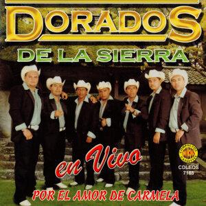 Dorados De La Sierra Foto artis
