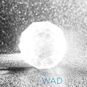 WAD Foto artis