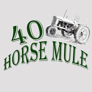 40 Horse Mule Foto artis