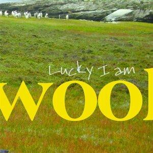 Wool 歌手頭像