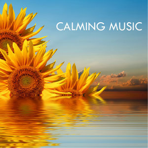 Calming Music Academy 歌手頭像
