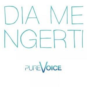 Pure Voice Foto artis