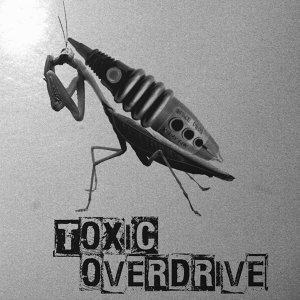 Toxic Overdrive Foto artis