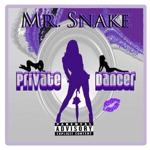 Mr. Snake Foto artis