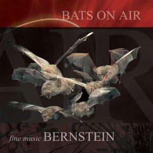 Fine Music Bernstein Foto artis