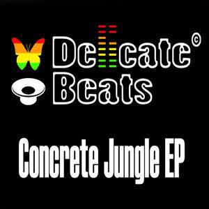 DelicateBeats 歌手頭像