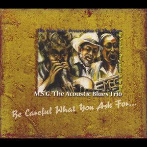 MSG the Acoustic Blues Trio Foto artis