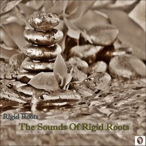 Rigid Roots Foto artis