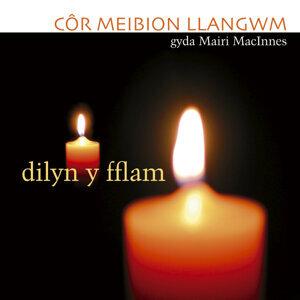 Cor Meibion Llangwm Male Voice Choir 歌手頭像
