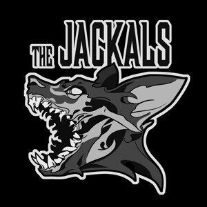 The Jackals 歌手頭像