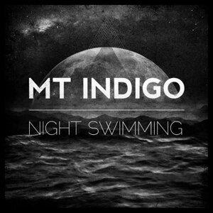 Mt Indigo Foto artis