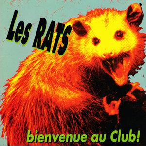 Les Rats Foto artis