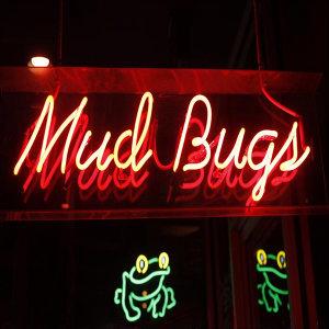 The Mudbugs Cajun & Zydeco Band Foto artis