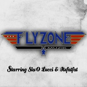 The Flyzone Foto artis