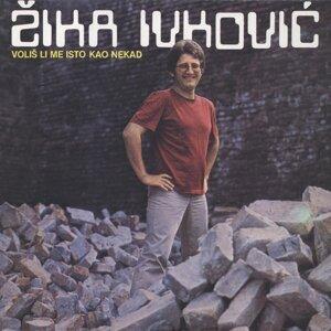 Žika Ivković Foto artis