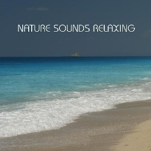 Nature Sounds Relaxing 歌手頭像