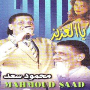 Mahmoud Saad Foto artis