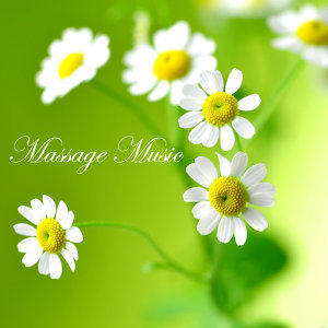Massage Music 歌手頭像