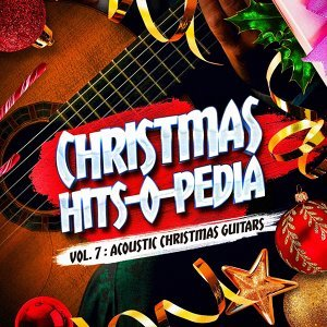 Acoustic Guitar Songs, The Acoustic Guitar Troubadours Foto artis