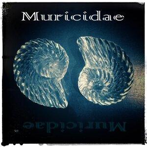 Muricidae Foto artis