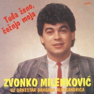 Zvonko Milenković Foto artis