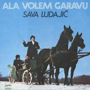 Sava Ludajić Foto artis