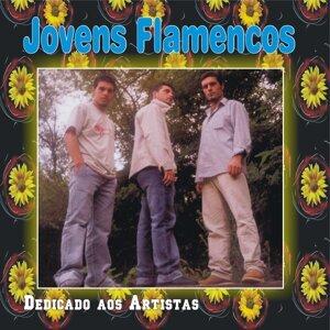 Jovens Flamencos Foto artis