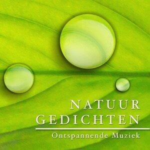 Meditative Music Guru & Sleep Music System Foto artis