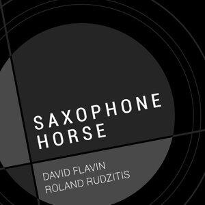 David Flavin, Roland Rudzitis Foto artis
