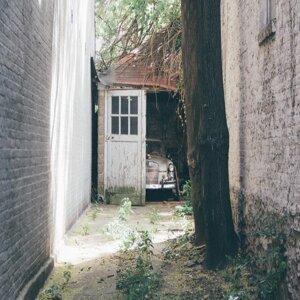 The Electric Walls Foto artis