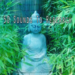 White Noise Research