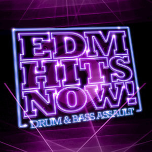 EDM Hits Now! Foto artis