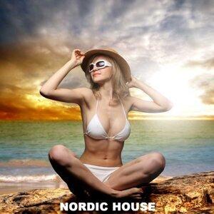 Nordic House Music DJ 歌手頭像