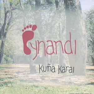 Pynandi Foto artis