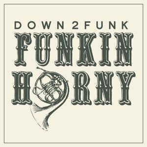 Down2Funk Foto artis