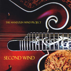 The Mandolin Wind Project Foto artis