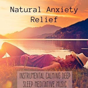 Lullaby Baby: Instrumental Classics & Calm Meditation & Sleep Songs with Nature Sounds Foto artis