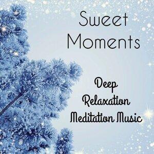 Meditation Spa & Deep Sleep & Classical Study Music Foto artis