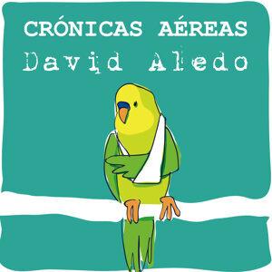 David Aledo Foto artis