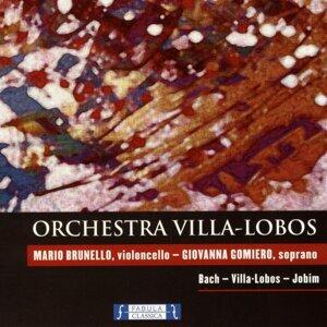 Giovanna Gomiero, Mario Brunello, Orchestra Villa-Lobos Foto artis