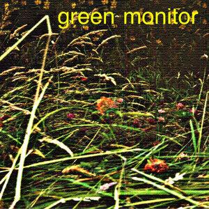Green Monitor Foto artis