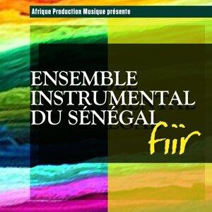 Ensemble instrumental du Sénégal Foto artis