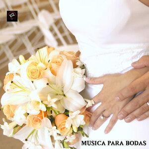 Musica Para Bodas 歌手頭像