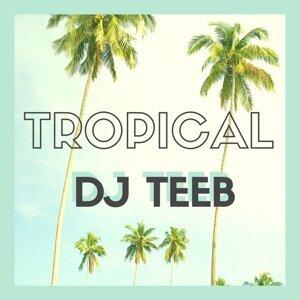 DJ Teeb Foto artis