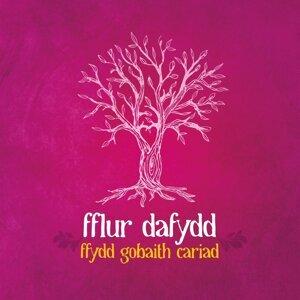 Fflur Dafydd 歌手頭像